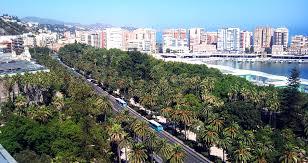 Bases de Convocatoria 7 Plazas de Técnico Medio Diplomado en Trabajo Social Ayuntamiento de Málaga.